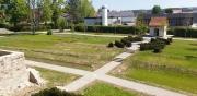 der Bürgerpark entsteht
