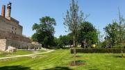Der Bürgerpark im Sommer