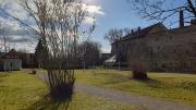 Der Bürgerpark in der Wintersonne 02/20